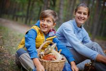 Mushrooms Picking, Season For Mushrooms - Lovely Kids With Picked Fresh Edible Mushrooms