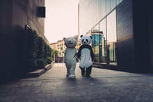 Teddy Bear And Panda Having Fun In The City