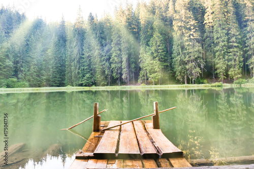 Foto auf AluDibond Olivgrun Forest lake in the mountains