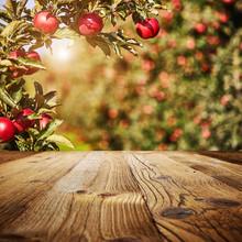 Table Space And Apple Garden O...