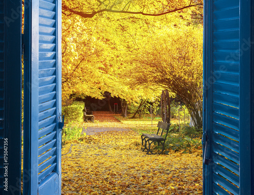 In de dag Oranje room with open blue window shutters to - fall garden with yellow tree leaves and bench