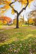 Autumn trees in Central Park with the Obelisk in the background, New York City, USA