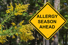 Caution - Allergy Season Ahead