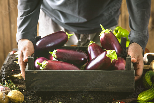 Farmer with aubergine