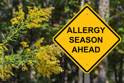 Fotografiet  Caution - Allergy Season Ahead