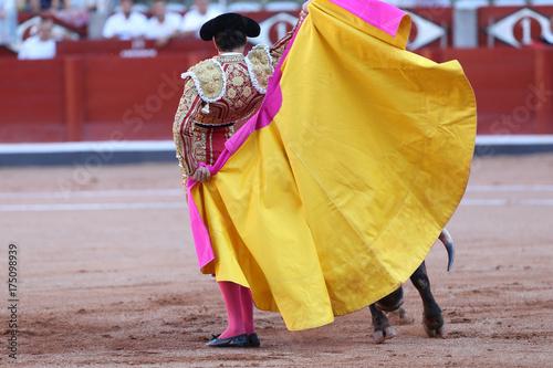 Foto op Canvas Stierenvechten Torero y toro en la plaza