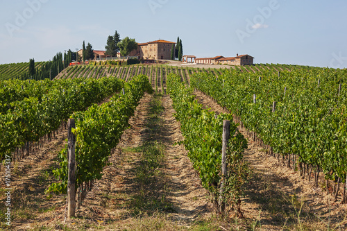 Foto  Traditional  Tuscany wine farm is surrounded by vineyards in the Chianti region,