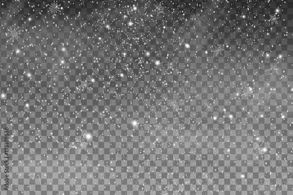 Fototapeta Falling Christmas Shining transparent beautiful snow isolated on the a transparent background. Snowflakes, snowfall. Vector illustration.
