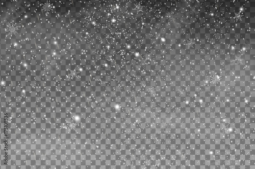 Falling Christmas Shining transparent beautiful snow isolated on the a transparent background. Snowflakes, snowfall. Vector illustration.