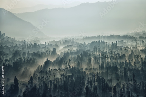 Bromo national park landscape in the morning