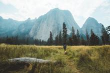 Girl Walking In The Meadow
