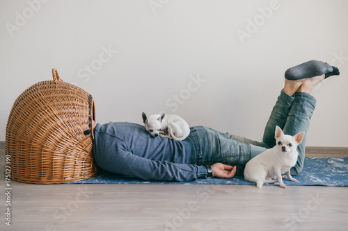 Man In Fashionable Clothing Weird Odd Bizarre Strange Unusual Headless Guy Little Mexican Chihuahua Puppies Sleeping At Home Homeless Dogs