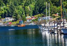 White Sailboats Marina Kayak R...