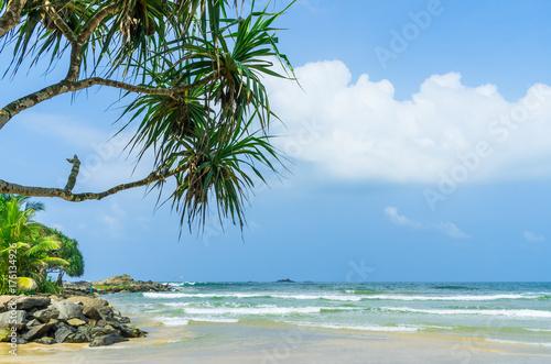Foto op Canvas Strand Tropical beach in Sri Lanka