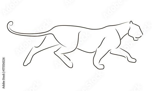 Running black line leopard on white background Canvas-taulu