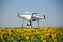 Phantom Drone And Sunflower Yellow Field Sky