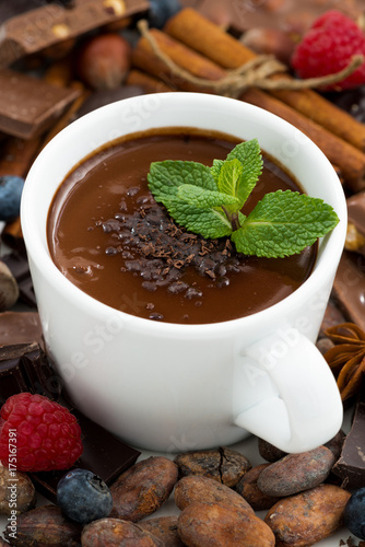 Spoed Foto op Canvas Chocolade hot chocolate with mint and ingredients, closeup