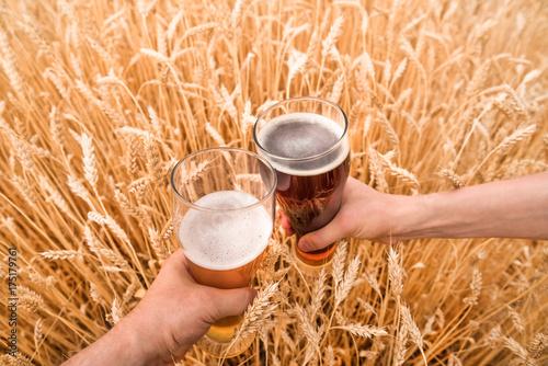 szklanka-piwa-w-dloni-w-polu-pszenicy