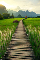 Fototapeta Orientalny Mountain sunset and green rice fields in Vang Vieng, Laos