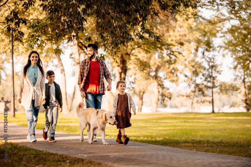 Fototapeta Family walking in park with dog