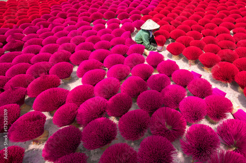 Incense sticks drying outdoor with Vietnamese woman wearing conical hat in north Wallpaper Mural