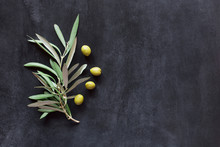 Olive Branch On A Background