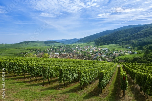 Photo Riquewihr en Alsace et son vignoble