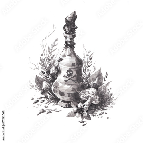 Fotografía  Hand drawn ink halloween detailed illustration of magic poison with toxic mushrooms, plants, flowers, berries, toadstools, thorn apple and crystals
