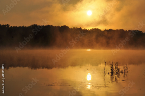 Poster  Beautiful dawn on the river. Landscape, nature, decline, beauty