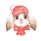 Cute rabbit. Watercolor illustration. Isolated on white background - 175253909
