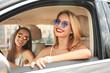 Beautiful young women in car