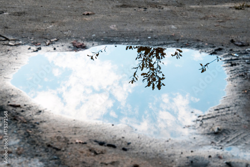 Fototapeta water puddle on the ground background