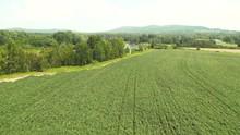 Aerial, Crop Fields In Aroosto...