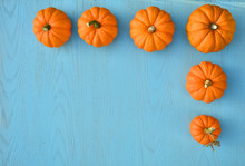 Orange Little Pumpkins On Blue...