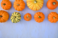 Various Pumpkins And Squashes On Wooden Background