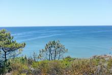 Peaceful Coastal Sunshine Beac...