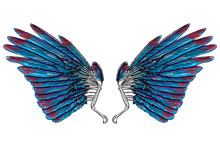 Sacred Angel Or Bird Wings. Sy...