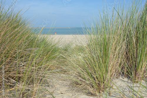 Spoed Foto op Canvas Noordzee Blick durch den Strandhafer in den Dünen zur Nordsee