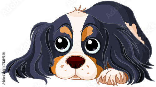 Foto op Canvas Sprookjeswereld Spaniel Dog