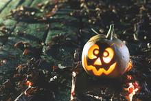 Halloween One Little Pumpkin A...
