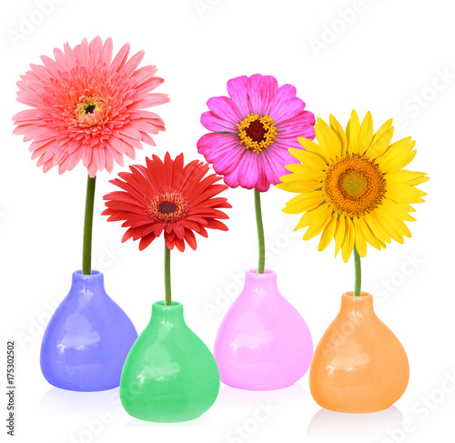 Fototapety, obrazy: Colorful spring flowers in vases isolate on white