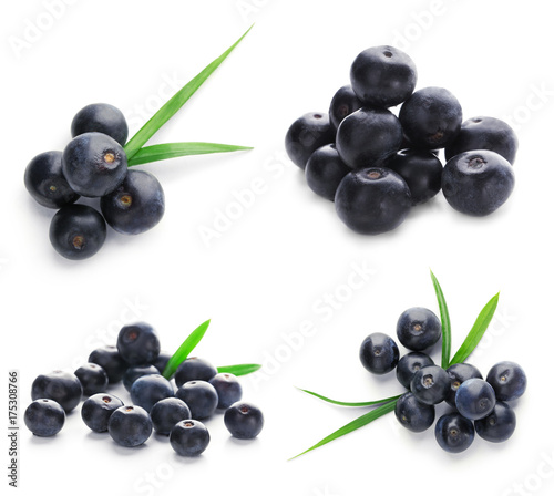 Collage of acai berries on white background Canvas Print