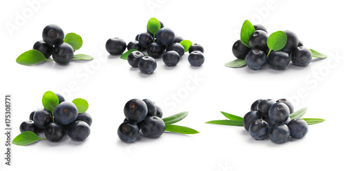 Collage of acai berries on white background