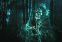 Scary Ghost Lurking In The Woods / High Contrast Image