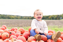 Little Boy In Pumpkin Field