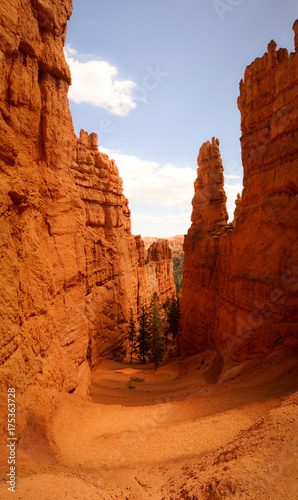 Photo Stands Cuban Red Down in Bryce Canyon