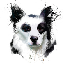 Watercolor Dog Portrait Of A B...