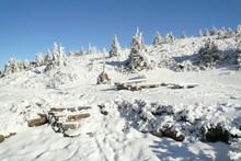 Beautiful Winter Countryside In Czech Republic With Blue Sky, Vresova Studanka, Jeseniky