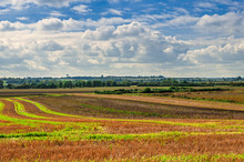 Agricultural Landscape, Field Following Harvest