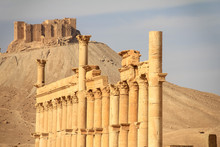 The Ruins Of The Ancient City ...
